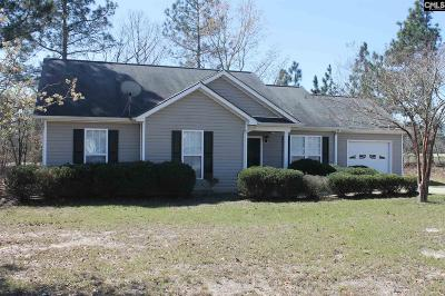 Lexington County, Richland County Single Family Home For Sale: 100 New Colony Ct