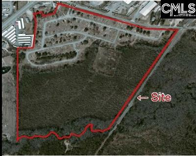 Lexington County Residential Lots & Land For Sale: 1420 Old Dunbar