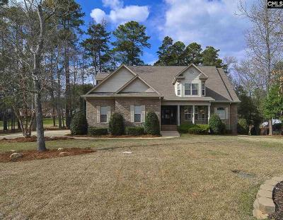 Lexington County Single Family Home For Sale: 221 Pointe Overlook