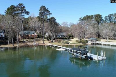 Chapin Single Family Home For Sale: 477 Lake Tide