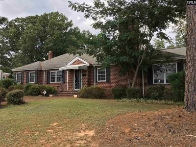 Saluda Single Family Home For Sale: 202 Greenwood