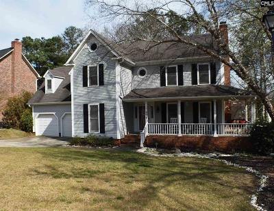 Lexington County Single Family Home For Sale: 228 Tolson