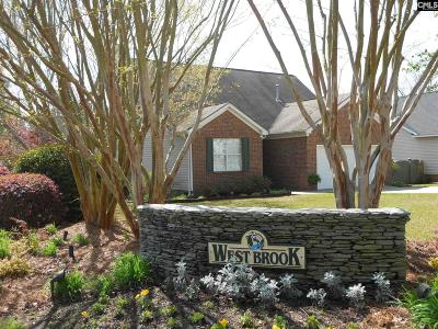 Single Family Home For Sale: 101 River Birch