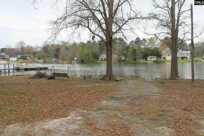 Lexington County, Newberry County, Richland County, Saluda County Single Family Home For Sale: 147 Holiday Acres