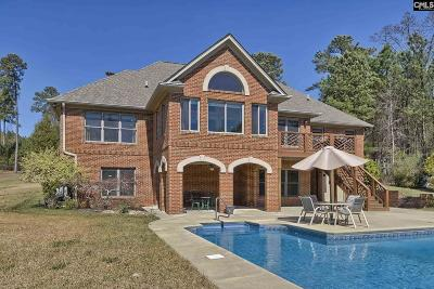 Lexington County Single Family Home For Sale: 1051 Point View
