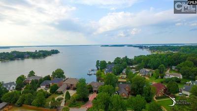 Lexington Single Family Home For Sale: 249 Country Lake