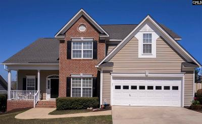 Irmo Single Family Home For Sale: 704 Millplace