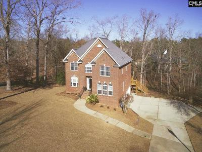 Irmo Single Family Home For Sale: 106 Land Stone