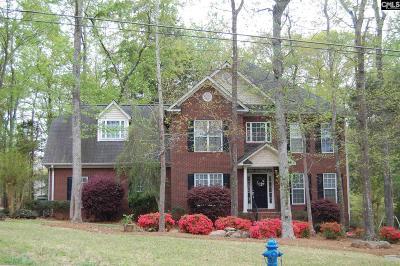 Lexington SC Single Family Home For Sale: $290,000