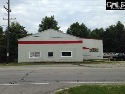 Commercial For Sale: 230 W Church