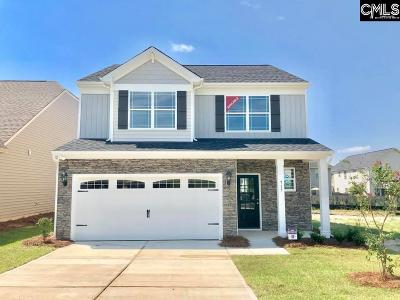 Lexington County Single Family Home For Sale: 717 Council
