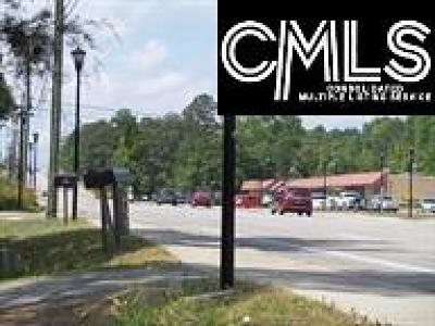 Cayce, S. Congaree, Springdale, West Columbia Residential Lots & Land For Sale: 3025 Platt Springs