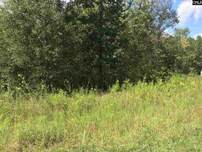 Lexington County, Newberry County, Richland County, Saluda County Residential Lots & Land For Sale: 149 Shinner