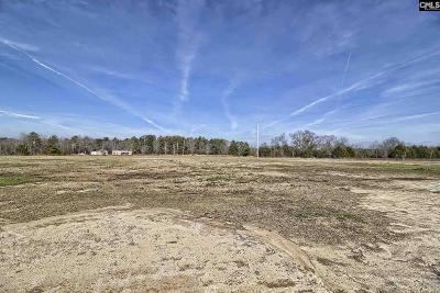 Monetta, Ridge Spring, Wagener, Johnston, Pelion, Newberry, Ward Residential Lots & Land For Sale: Tindal