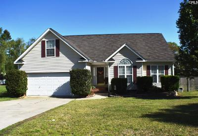 Irmo Single Family Home For Sale: 206 Walnut Grove