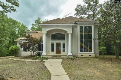 Irmo Single Family Home For Sale: 110 Silver Beech