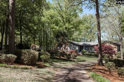Blythewood Single Family Home For Sale: 208 Pineview Church