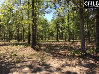 Lexington County, Richland County Residential Lots & Land For Sale: Amicks Ferry