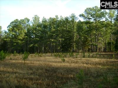 Richland County, Kershaw County, Lexington County Residential Lots & Land For Sale: Clemson
