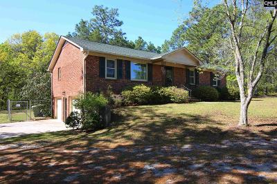 Lexington County, Richland County Single Family Home For Sale: 545 Pleasant View Dr