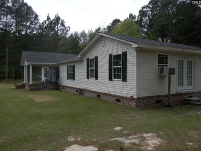 Eastover Single Family Home For Sale: 234 Heape