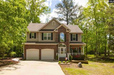 Lexington County, Richland County Single Family Home For Sale: 127 Arrow Shores