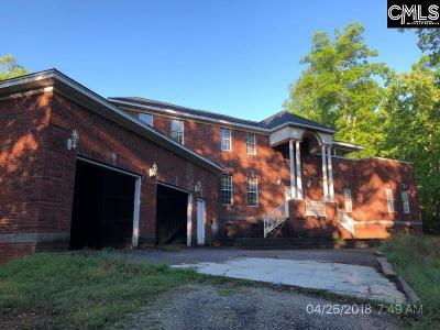 Lexington County, Richland County Single Family Home For Sale: 317 Wayne McCaw