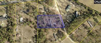 Lexington County, Richland County Single Family Home For Sale: 110 Burnt Pine
