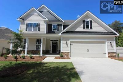 Blythewood Single Family Home For Sale: 132 Playground #2019