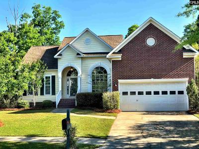 Waterfall Single Family Home For Sale: 106 Blackwater