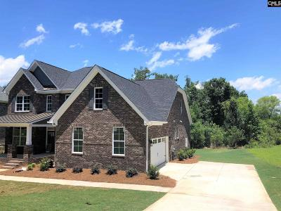 Chapin Single Family Home For Sale: 334 Forty Love Point