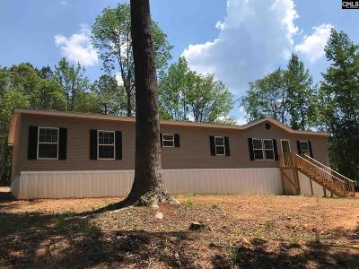Chapin Single Family Home For Sale: 256 Old Shealy
