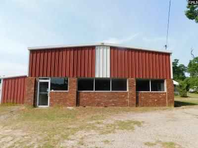Monetta, Ridge Spring, Wagener, Johnston, Pelion, Newberry, Ward Commercial For Sale: 5501 Columbia