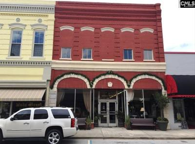 Newberry Commercial For Sale: 1213 Main