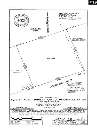 Lexington County Residential Lots & Land For Sale: 205 Sturkie