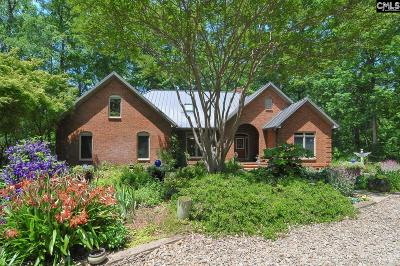 Lexington County Single Family Home For Sale: 213 Browns River