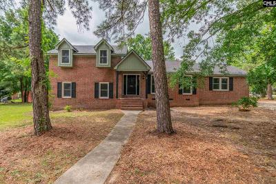 Irmo Single Family Home For Sale: 500 Charing Cross