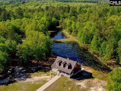 Aiken Single Family Home For Sale: 673 Kedron Church