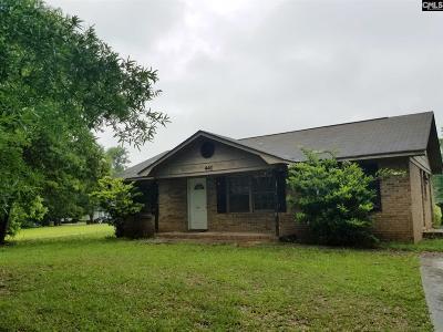 Lexington County, Richland County Single Family Home For Sale: 441 Main