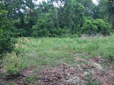 Cayce, Springdale, West Columbia Residential Lots & Land For Sale: 1827 Memorial