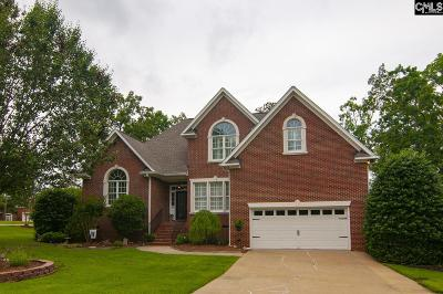 Fairfield County, Lexington County, Richland County Single Family Home For Sale: 130 Heavens Edge