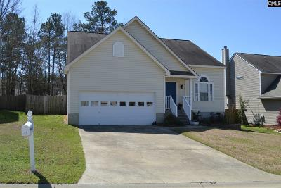Chapin Single Family Home For Sale: 39 Stoney Pointe