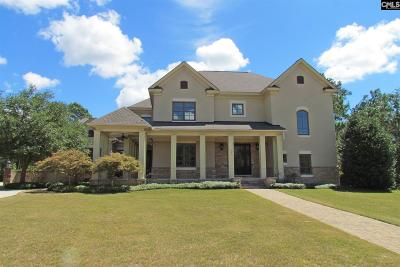 Blythewood Single Family Home For Sale: 231 Wrenfield