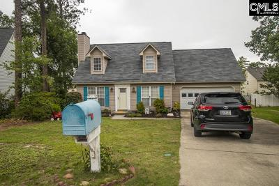 Lexington Single Family Home For Sale: 241 Amber Chase