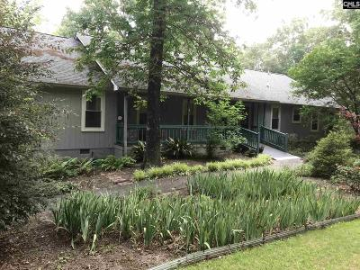Cayce, S. Congaree, Springdale, West Columbia Single Family Home For Sale: 167 Broken Arrow