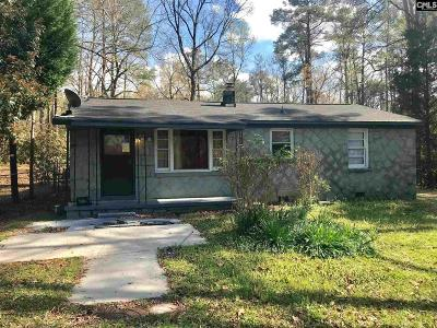 Lexington County, Richland County Single Family Home For Sale: 1158 Dothan