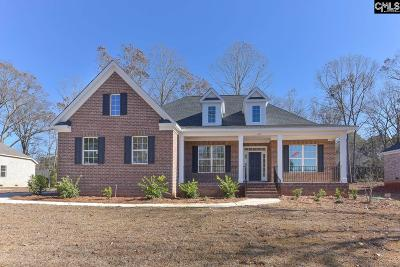 Chapin Single Family Home For Sale: 231 Hilton View