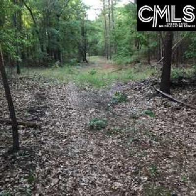 Residential Lots & Land For Sale: 799B Kershaw