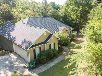 Irmo Single Family Home For Sale: 238 River Creek