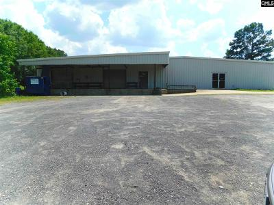 Commercial For Sale: 6501 Augusta